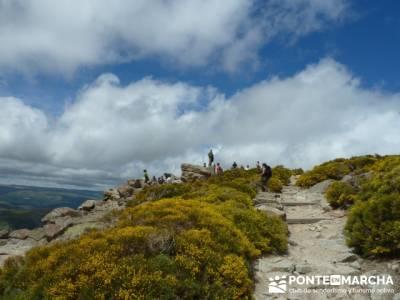 Parque Regional Sierra de Gredos - Laguna Grande de Gredos;viajes en diciembre;viajes en grupo organ